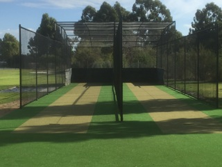 New cricket wickets